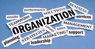 Organization & Management